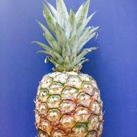 Ananas i egen juice